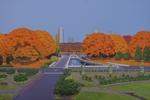 代々木公園の紅葉NHK側より望む